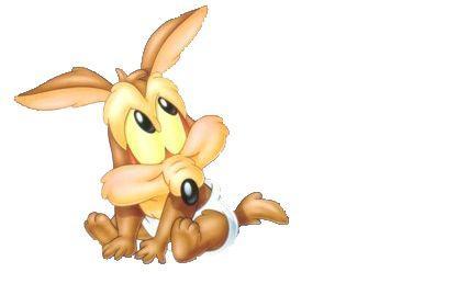 Imagenes de el coyote bebé - Imagui